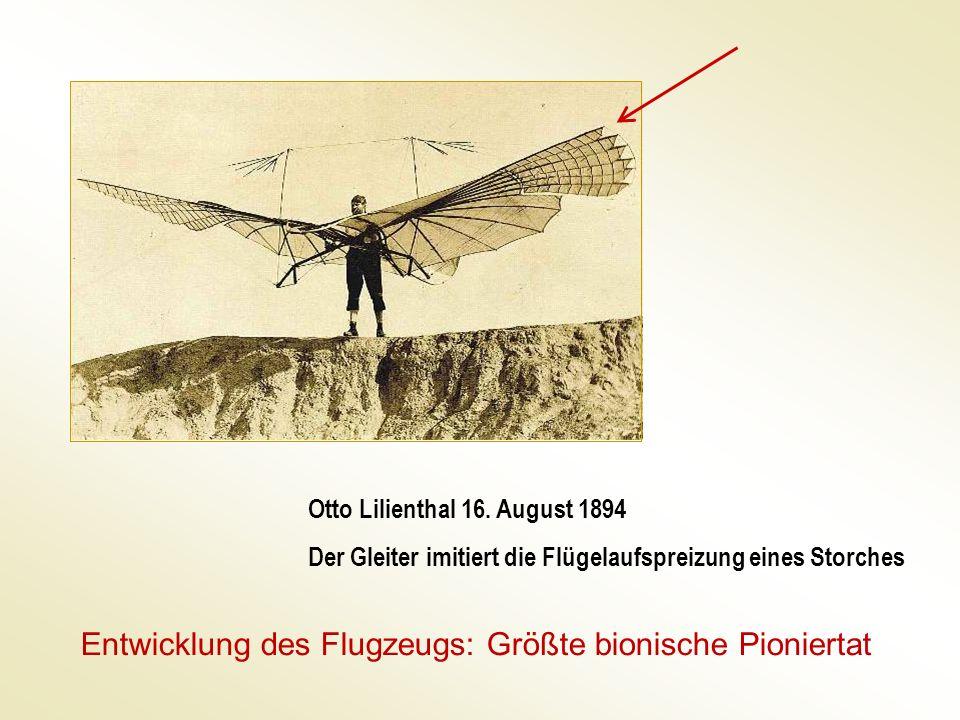 Entwicklung des Flugzeugs: Größte bionische Pioniertat