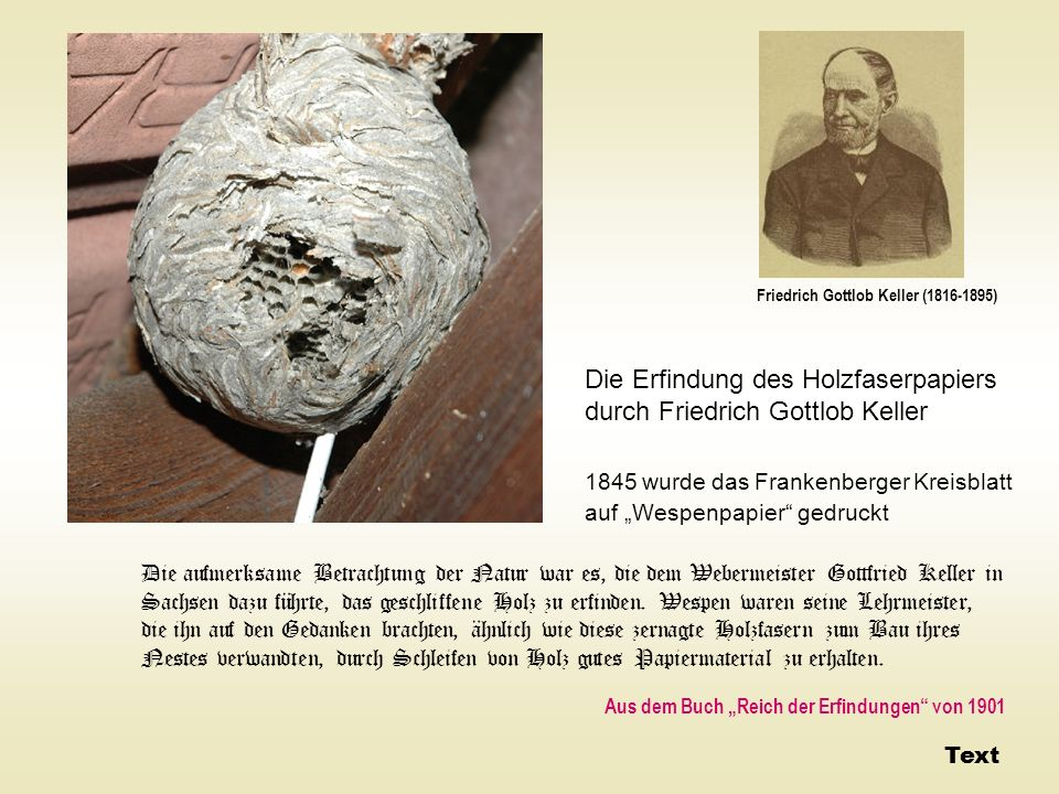 Die Erfindung des Holzfaserpapiers durch Friedrich Gottlob Keller