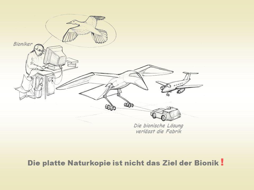 Die bionische Lösung verlässt die Fabrik