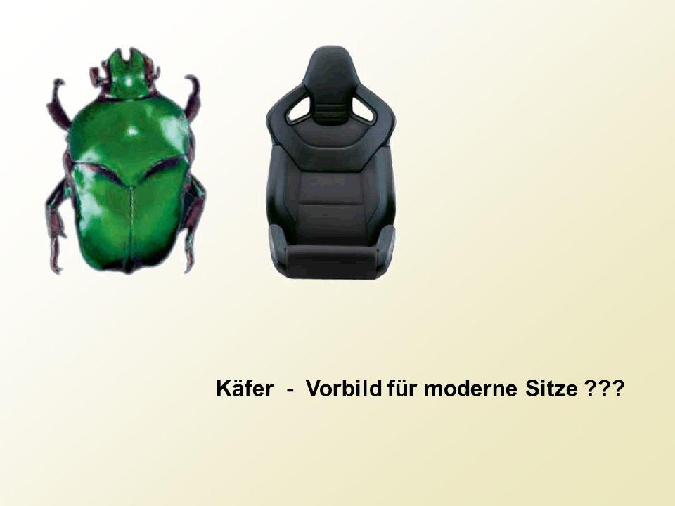 Käfer - Vorbild für moderne Sitze