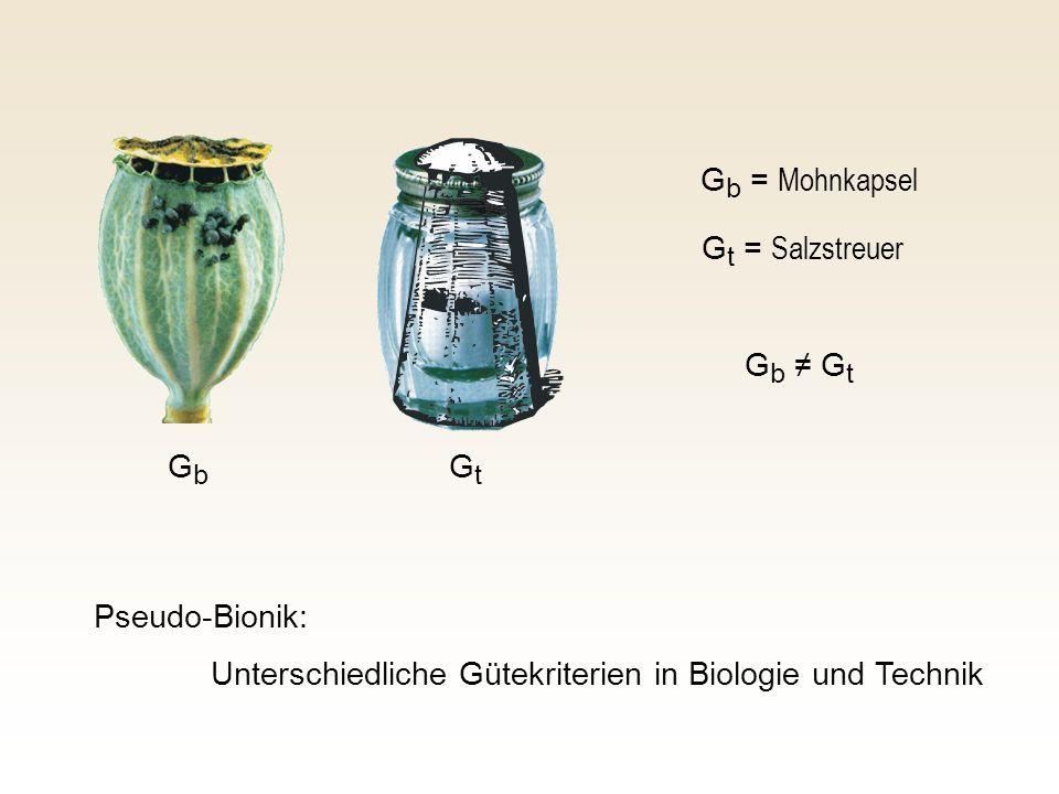 Gb = MohnkapselGt = Salzstreuer.Gb ≠ Gt. Gb. Gt.