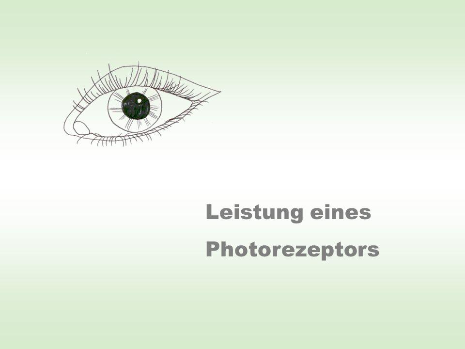 Leistung eines Photorezeptors