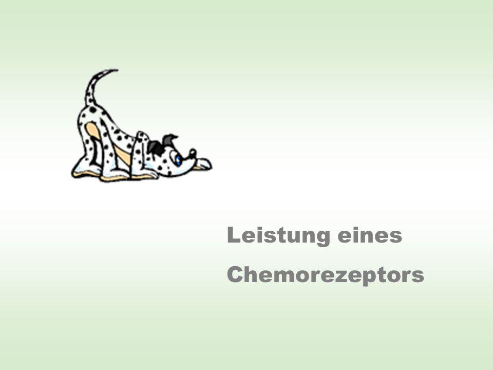 Leistung eines Chemorezeptors