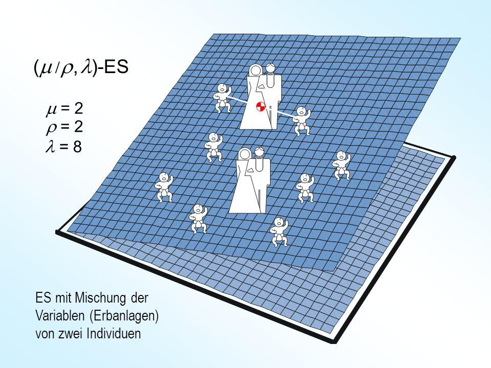 (m /r , l)-ES m = 2 r = 2 l = 8 ES mit Mischung der Variablen (Erbanlagen) von zwei Individuen
