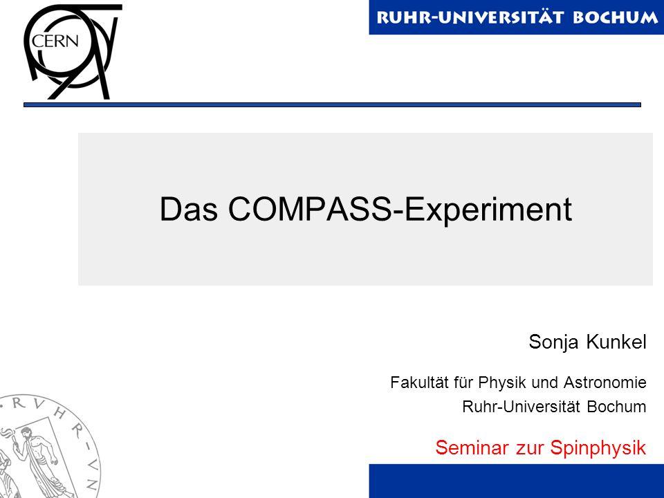Das COMPASS-Experiment