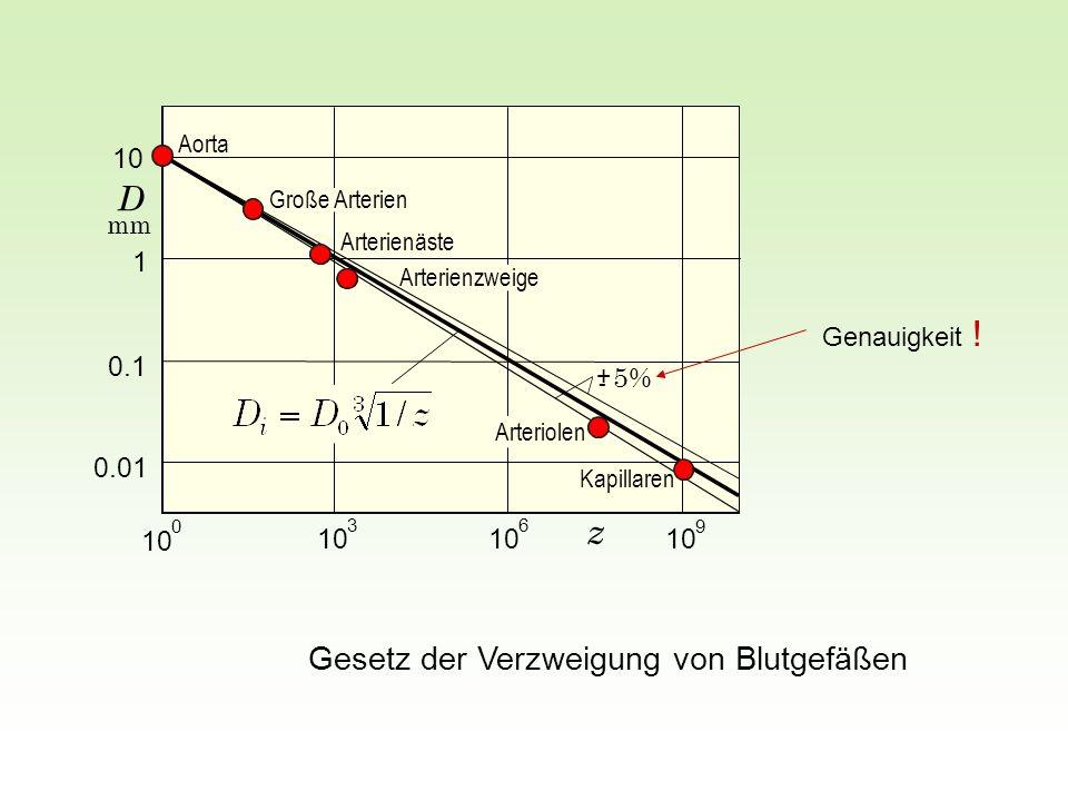z D Gesetz der Verzweigung von Blutgefäßen 10 1 0.1 5% 0.01 10 10 10