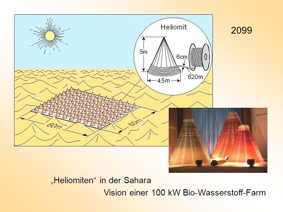 """2099 """"Heliomiten in der Sahara"""