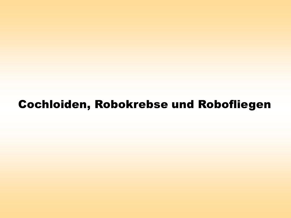 Cochloiden, Robokrebse und Robofliegen