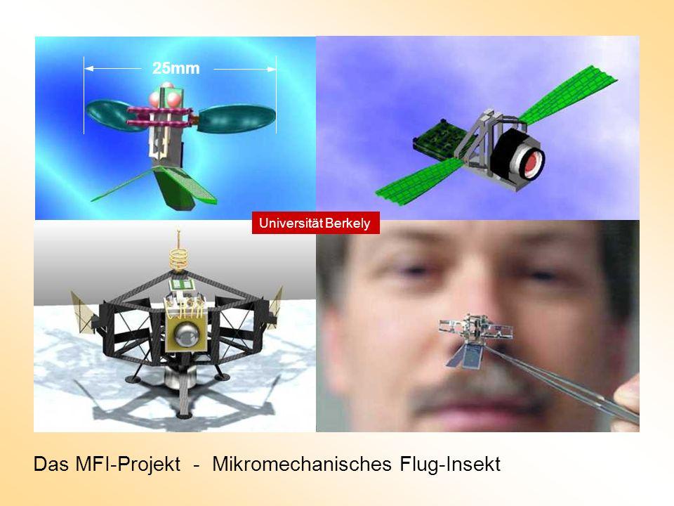 Das MFI-Projekt - Mikromechanisches Flug-Insekt