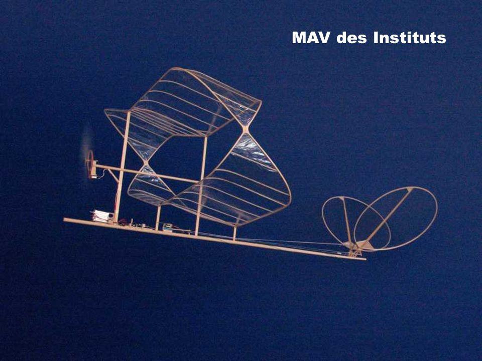 MAV des Instituts