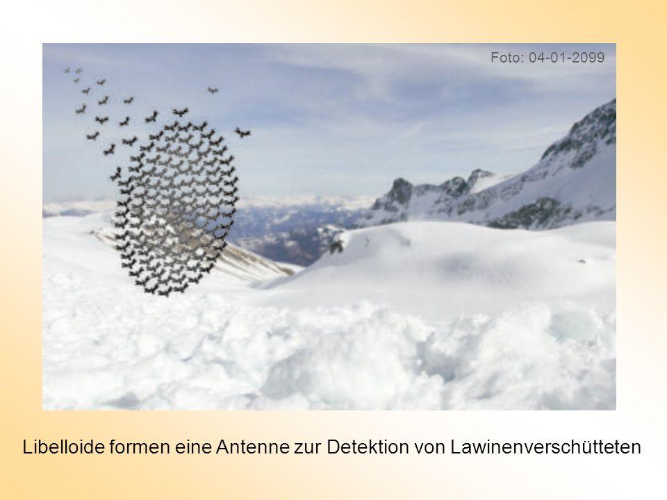 Libelloide formen eine Antenne zur Detektion von Lawinenverschütteten