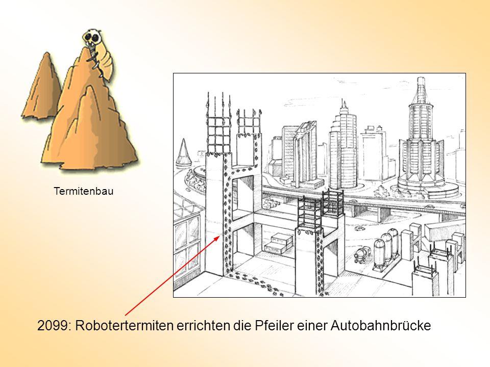2099: Robotertermiten errichten die Pfeiler einer Autobahnbrücke
