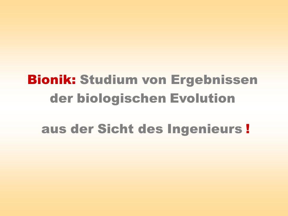 Bionik: Studium von Ergebnissen der biologischen Evolution