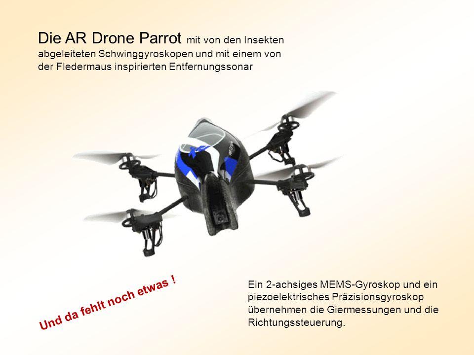Die AR Drone Parrot mit von den Insekten abgeleiteten Schwinggyroskopen und mit einem von der Fledermaus inspirierten Entfernungssonar