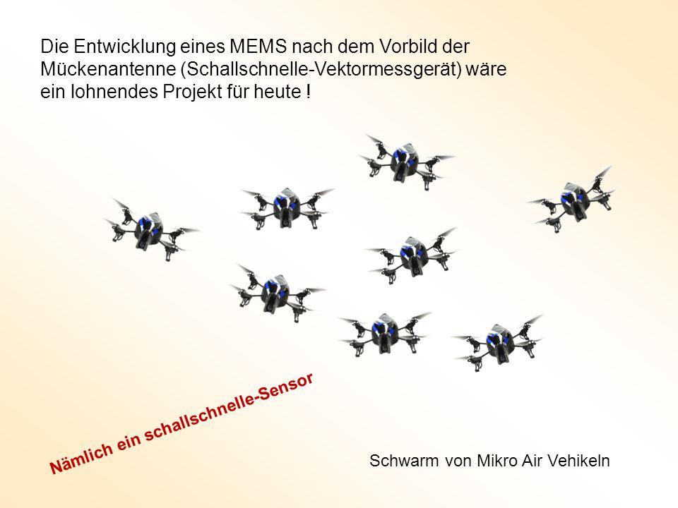 Die Entwicklung eines MEMS nach dem Vorbild der Mückenantenne (Schallschnelle-Vektormessgerät) wäre ein lohnendes Projekt für heute !