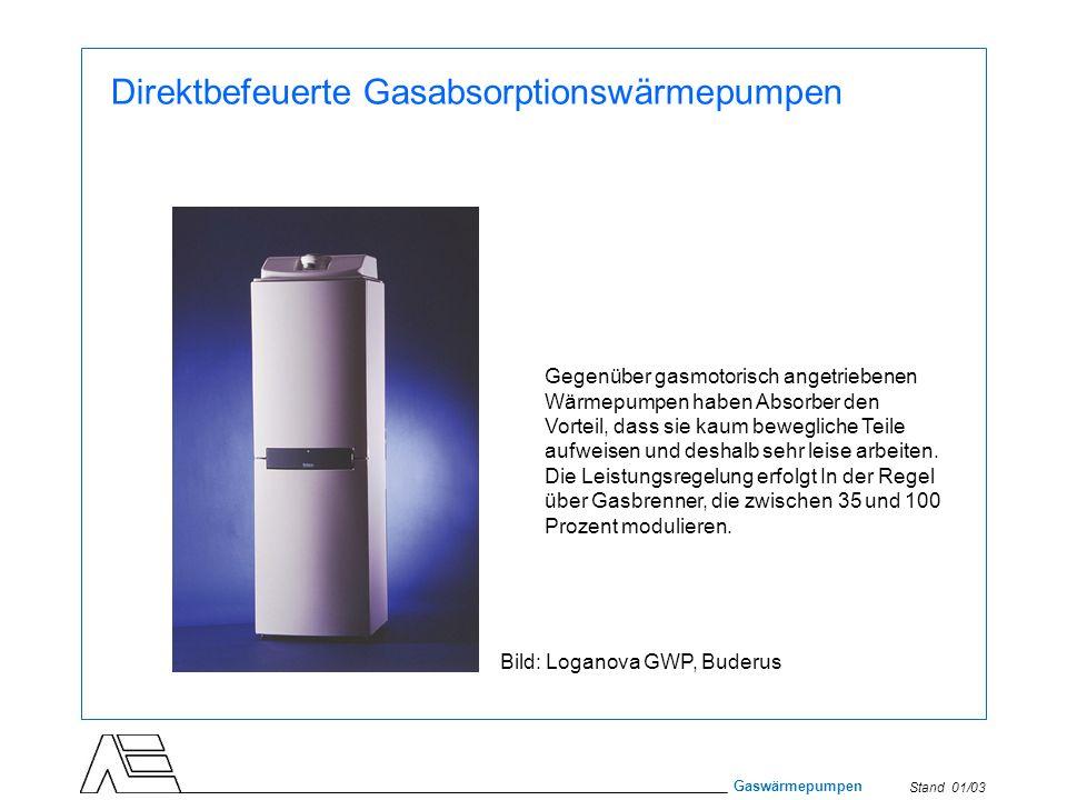 Direktbefeuerte Gasabsorptionswärmepumpen