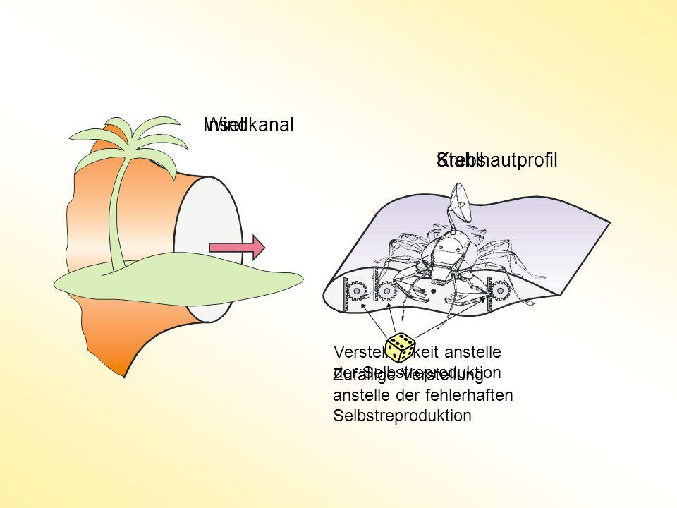 Insel Windkanal Stahlhautprofil Krebs