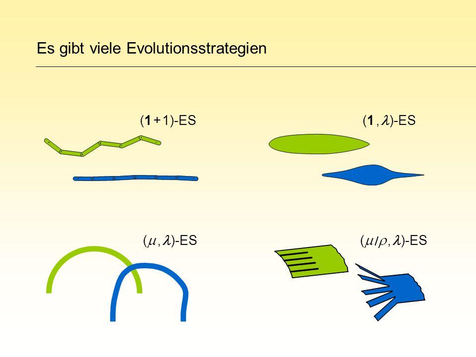 Es gibt viele Evolutionsstrategien