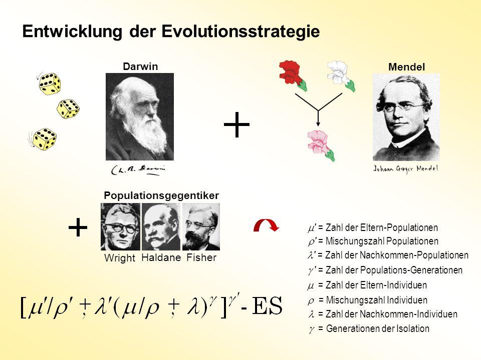 Entwicklung der Evolutionsstrategie
