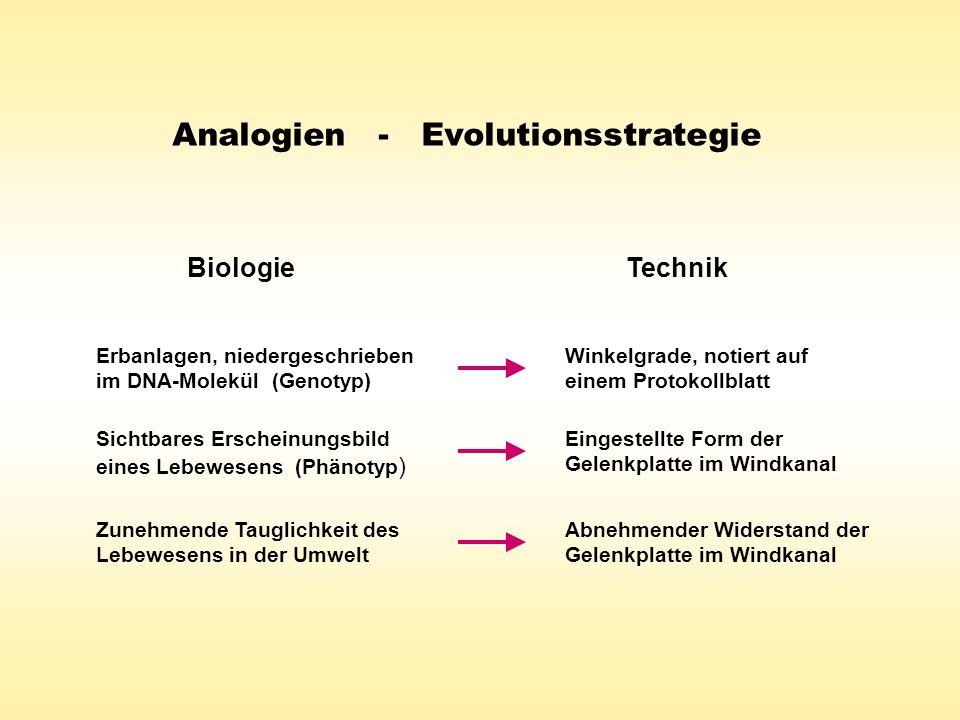 Analogien - Evolutionsstrategie
