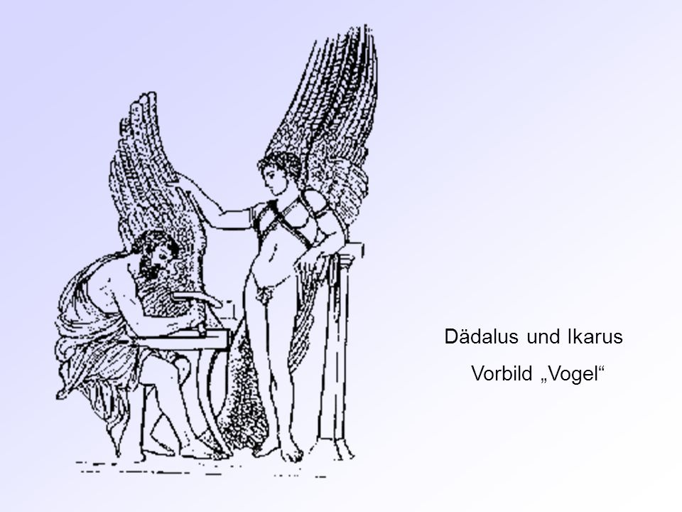 """Dädalus und Ikarus Vorbild """"Vogel"""