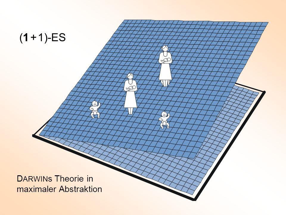 (1 + 1)-ES DARWINs Theorie in maximaler Abstraktion