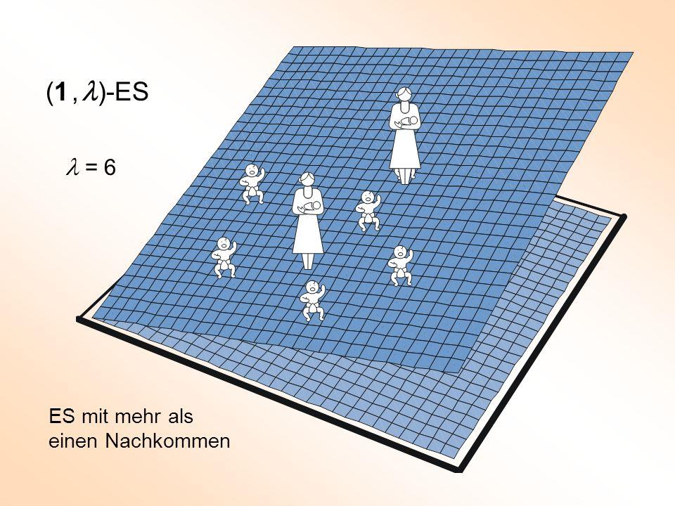 (1 , l)-ES l = 6 ES mit mehr als einen Nachkommen