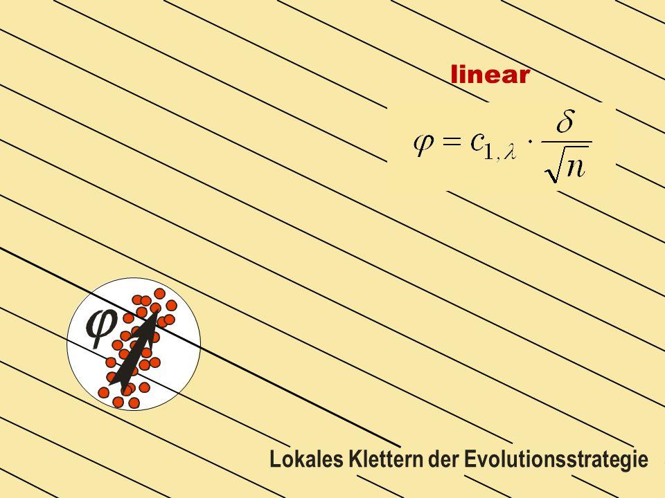 linear Lokales Klettern der Evolutionsstrategie