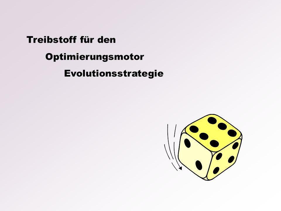 Treibstoff für den Optimierungsmotor Evolutionsstrategie