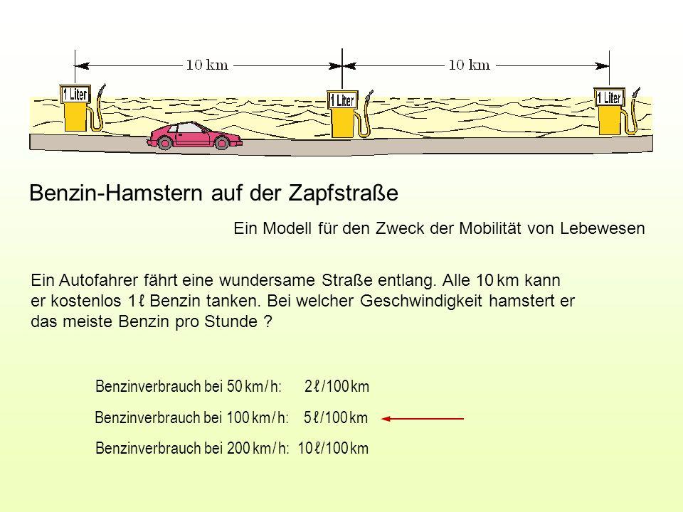 Benzin-Hamstern auf der Zapfstraße