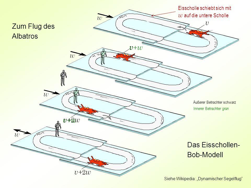 Das Eisschollen-Bob-Modell