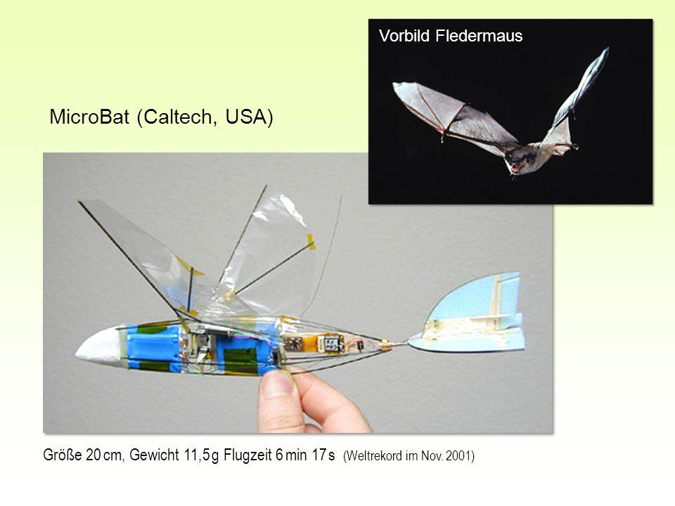 MicroBat (Caltech, USA)