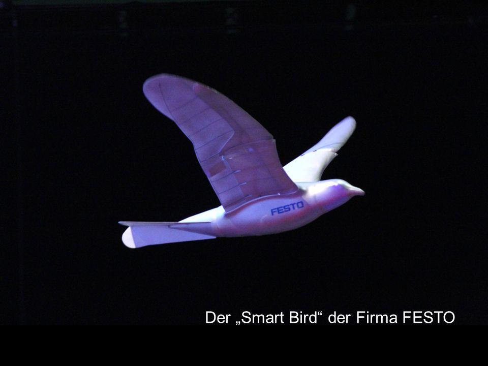 """Der """"Smart Bird der Firma FESTO"""