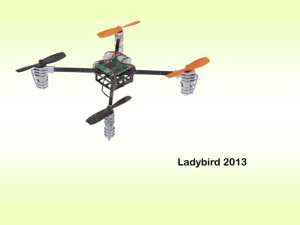Ladybird 2013