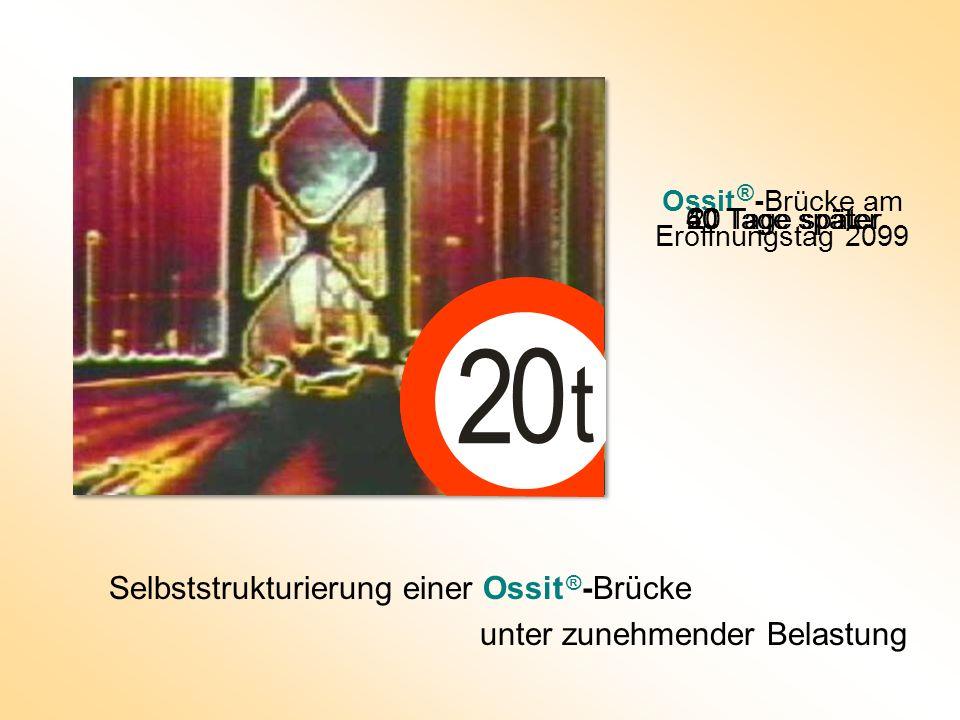 Ossit ®-Brücke am Eröffnungstag 2099