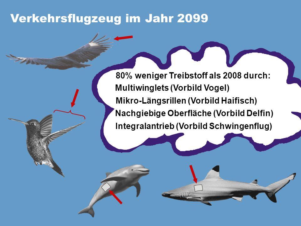 Verkehrsflugzeug im Jahr 2099