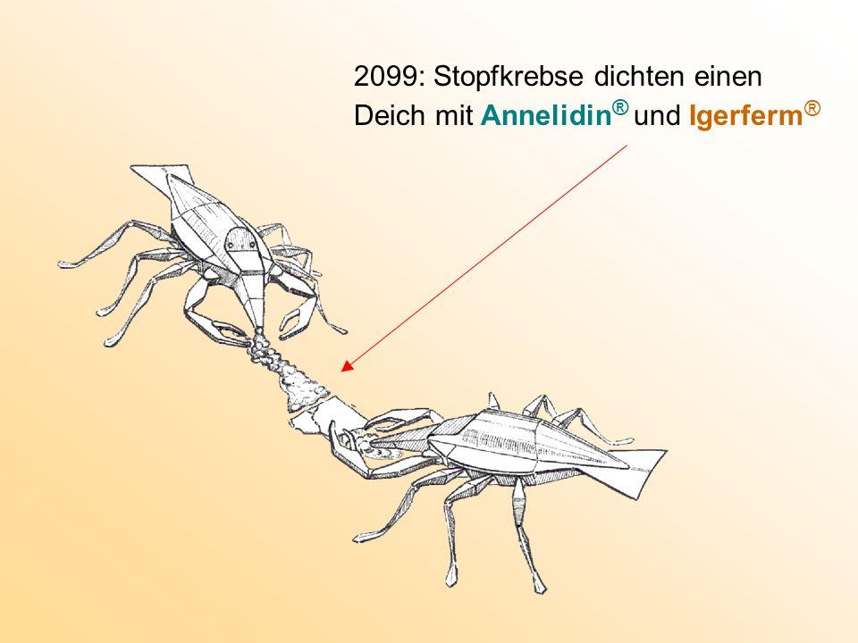 2099: Stopfkrebse dichten einen Deich mit Annelidin® und Igerferm ®