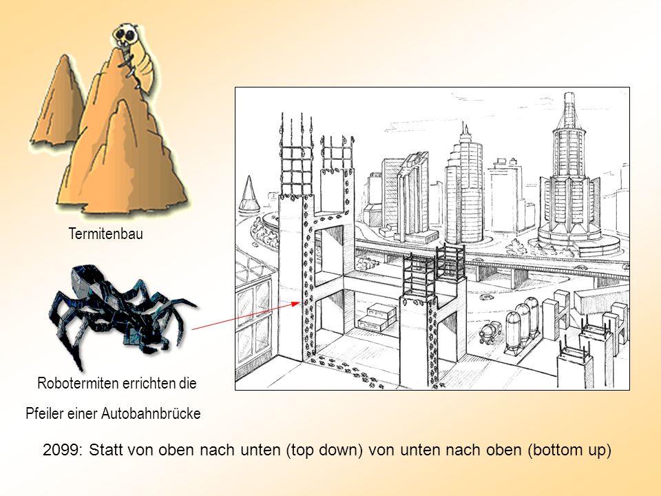 Robotermiten errichten die