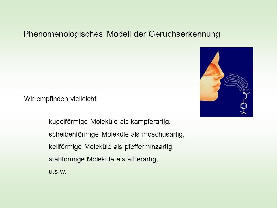 Phenomenologisches Modell der Geruchserkennung