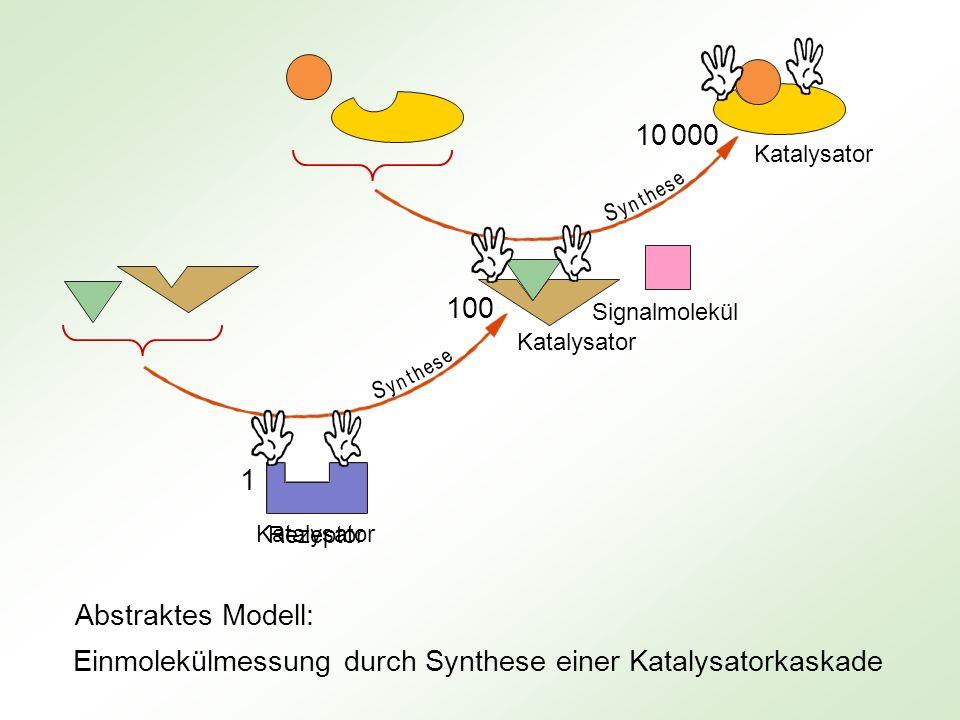 Einmolekülmessung durch Synthese einer Katalysatorkaskade