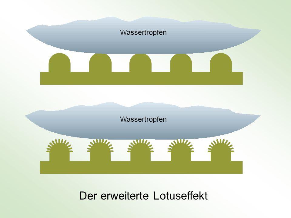 Der erweiterte Lotuseffekt