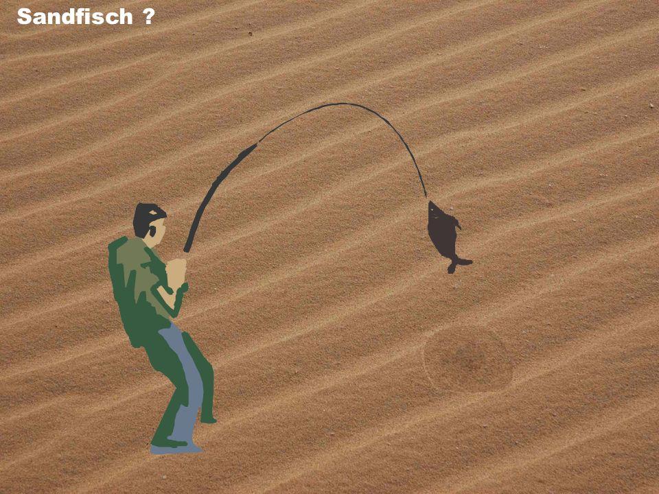 Sandfisch