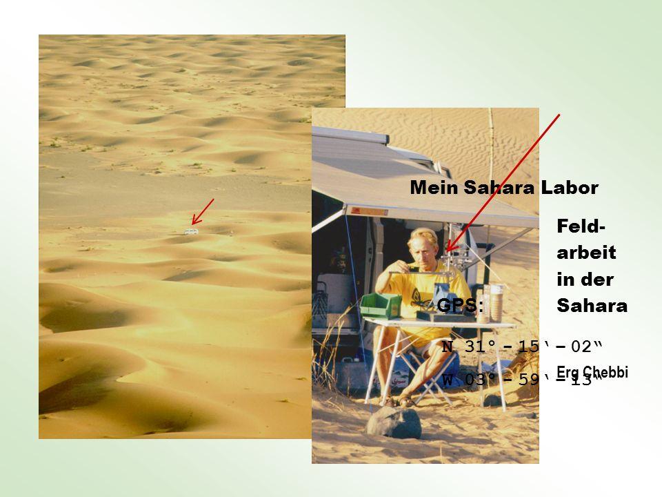 GPS: Mein Sahara Labor Feld- arbeit in der Sahara N 31° - 15' – 02