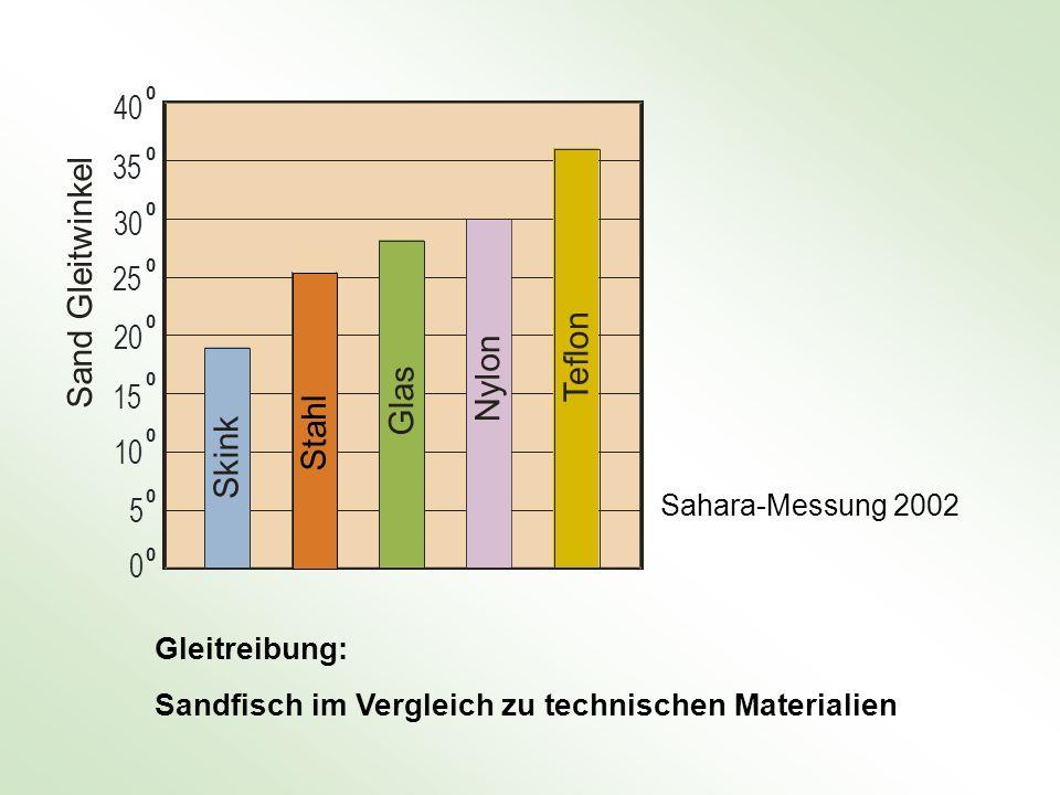 Sand Gleitwinkel n o n l o f s l e a y T l tahl N G k n i S k S 40 35