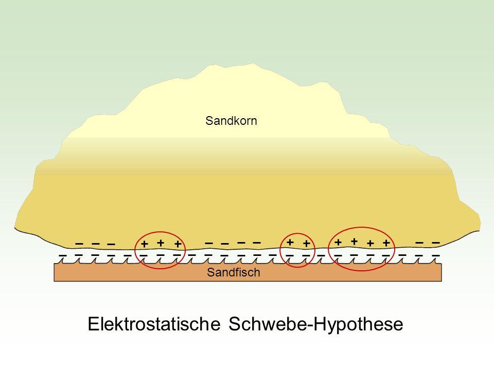 Elektrostatische Schwebe-Hypothese
