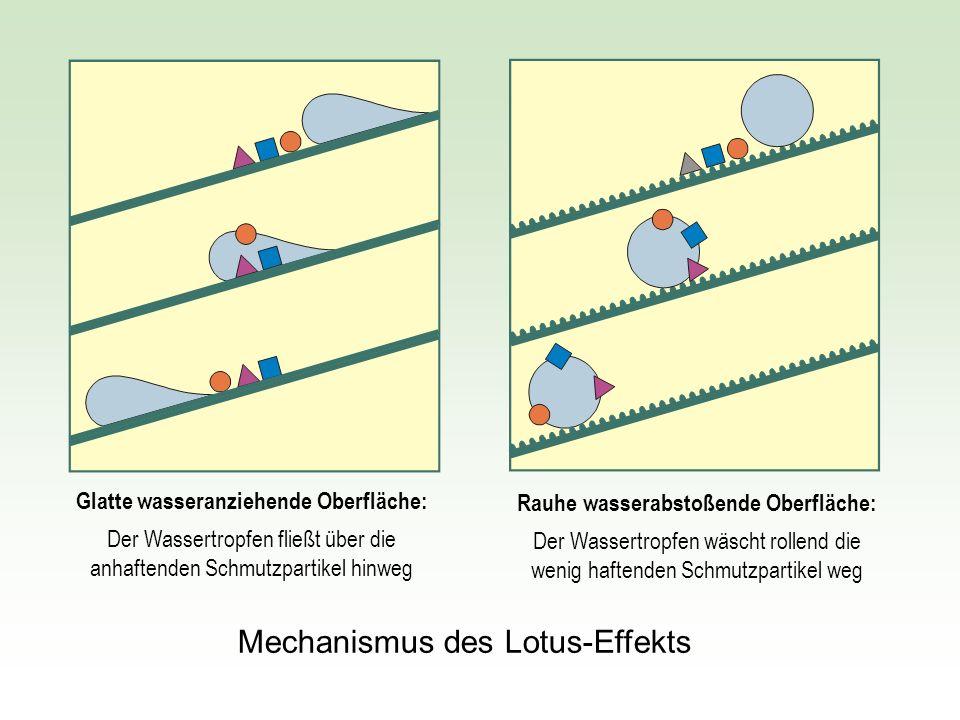 Glatte wasseranziehende Oberfläche: Rauhe wasserabstoßende Oberfläche: