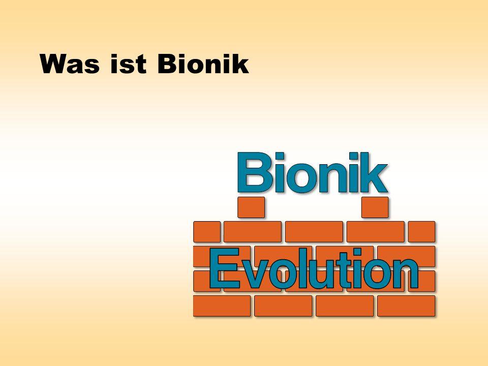 Was ist Bionik