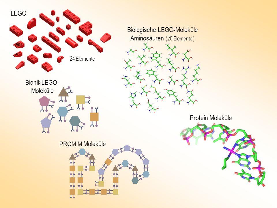 Biologische LEGO-Moleküle Aminosäuren ( 20 Elemente )