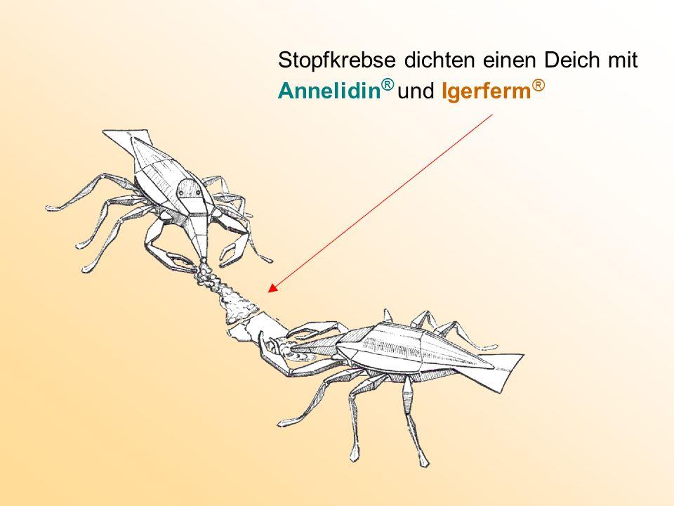 Stopfkrebse dichten einen Deich mit Annelidin® und Igerferm ®