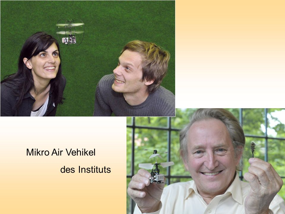 Mikro Air Vehikel des Instituts